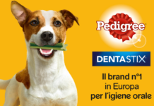 the insiders tester pedigree dentastix