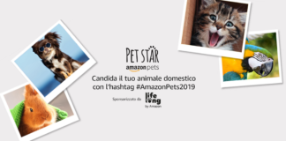 amazon pet star