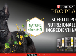 the insiders purina pro plan