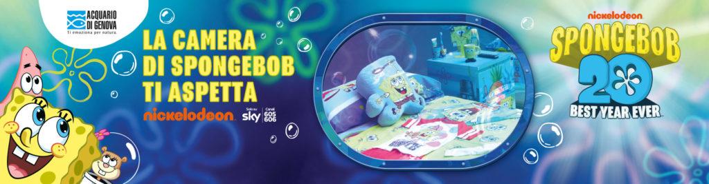 camera spongebob acquario genova