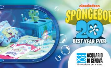 acquario genova camera spongebob